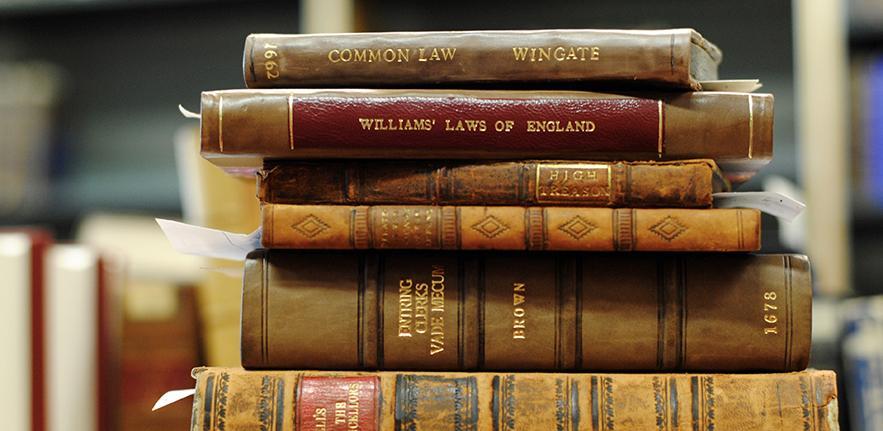 Gender in Constitutional Law